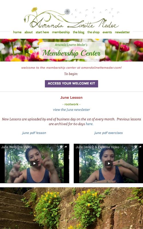Amanda Linette Meder's Membership Program