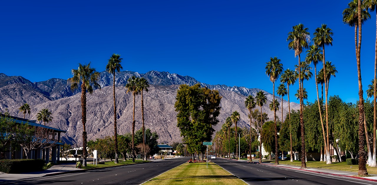 Can You Be Visited By A Deceased Celebrity?  Photo: Pixabay Image: two-landed boulevard in Palm Springs with Palm Trees on either side and a mountain ahead.