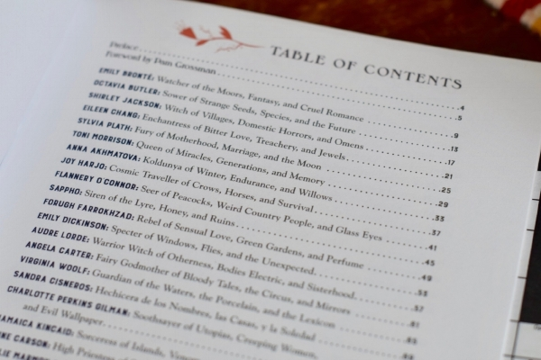 Table of Contents, Photo  Amanda Linette Meder