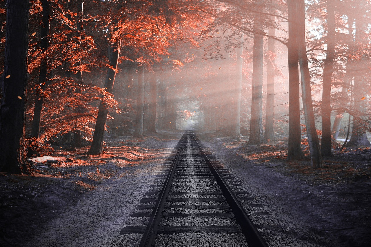 Article: 直觉vs. Imagination. How Do I Know If What I Psychically See Is Real? Image: Railway ties in an autumn misty forest from Pixabay.