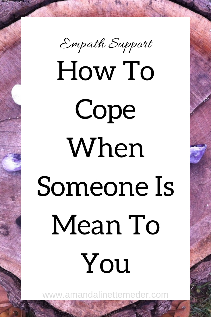 Article: How To Cope When Someone Is Mean To You Amanda Linette Meder