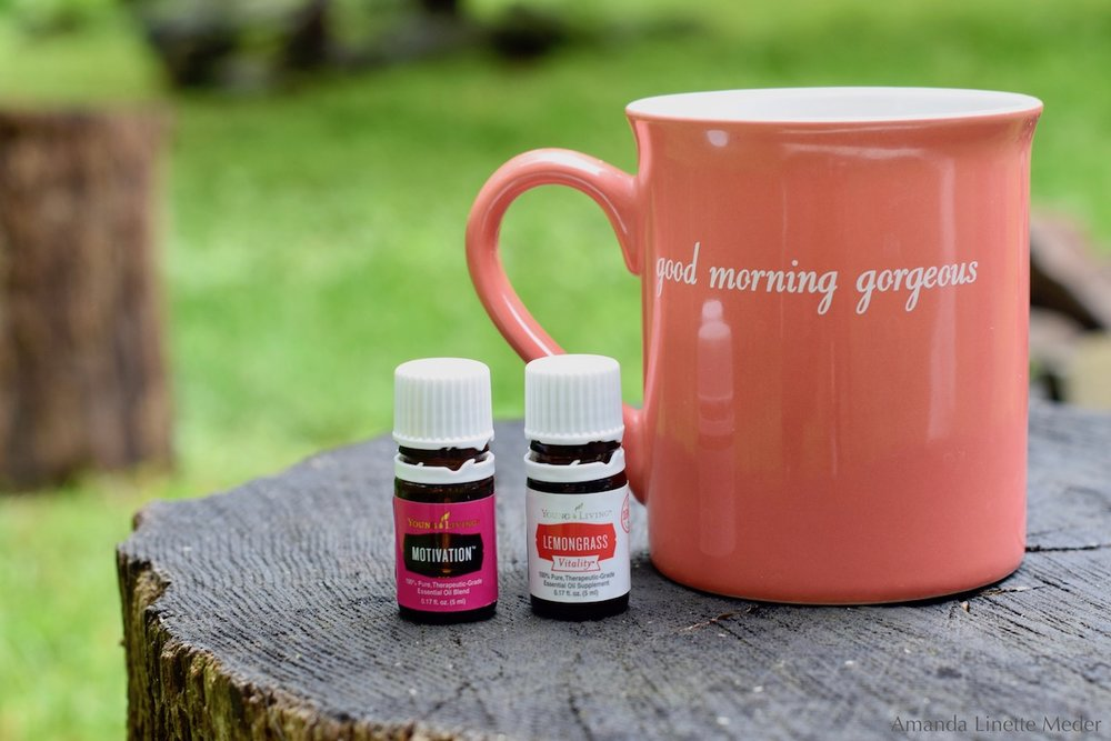 Article: 4 Mindful Techniques To Get Motivated To Work In The Morning Photo Amanda Linette Meder, image of Good Morning Mug on a tree stump plus Young Living Essential Oils Motivation and Lemongrass. Need to get motivated to work in the morning? Read on