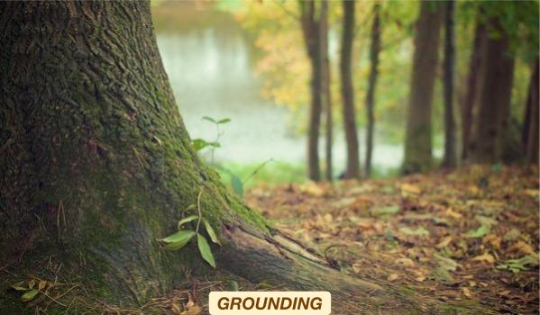 MEMBER_THEMES-GROUNDING.jpg
