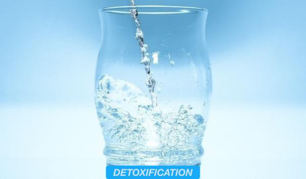 MEMBER_THEMES-DETOXIFICATION.jpg