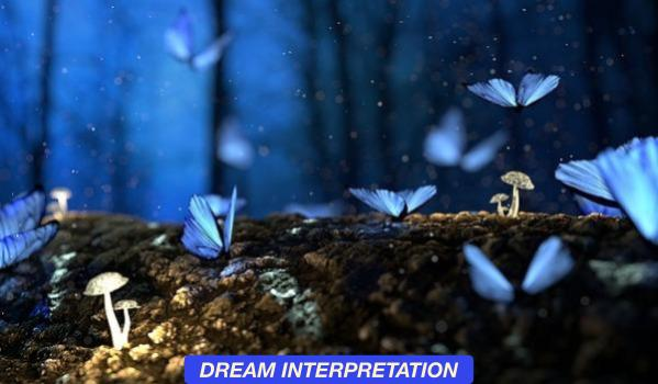 MEMBER_THEMES-DREAMINTERPRETATION.jpg