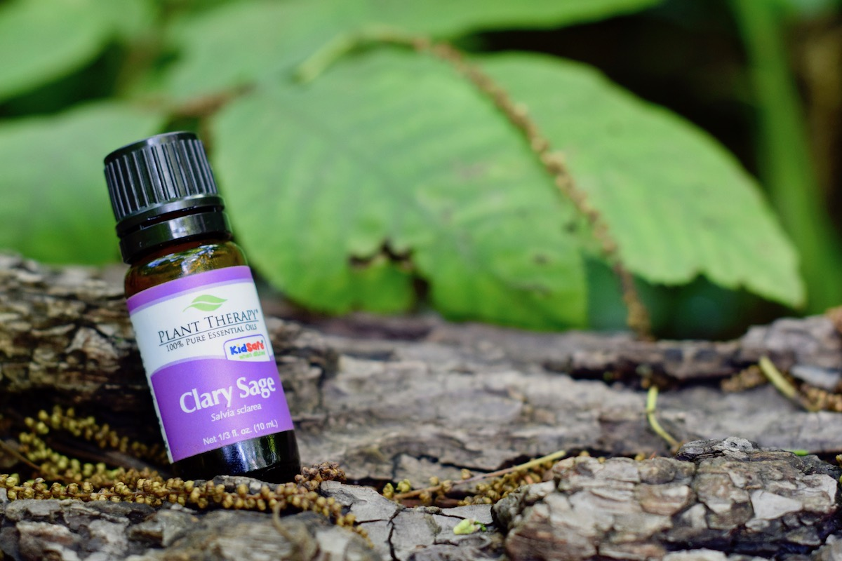 Article:  How To Use Essential Oils Sustainably Photo by Amanda Linette Meder of PLant Therapy's Clary Sage on tree bark in the woods.