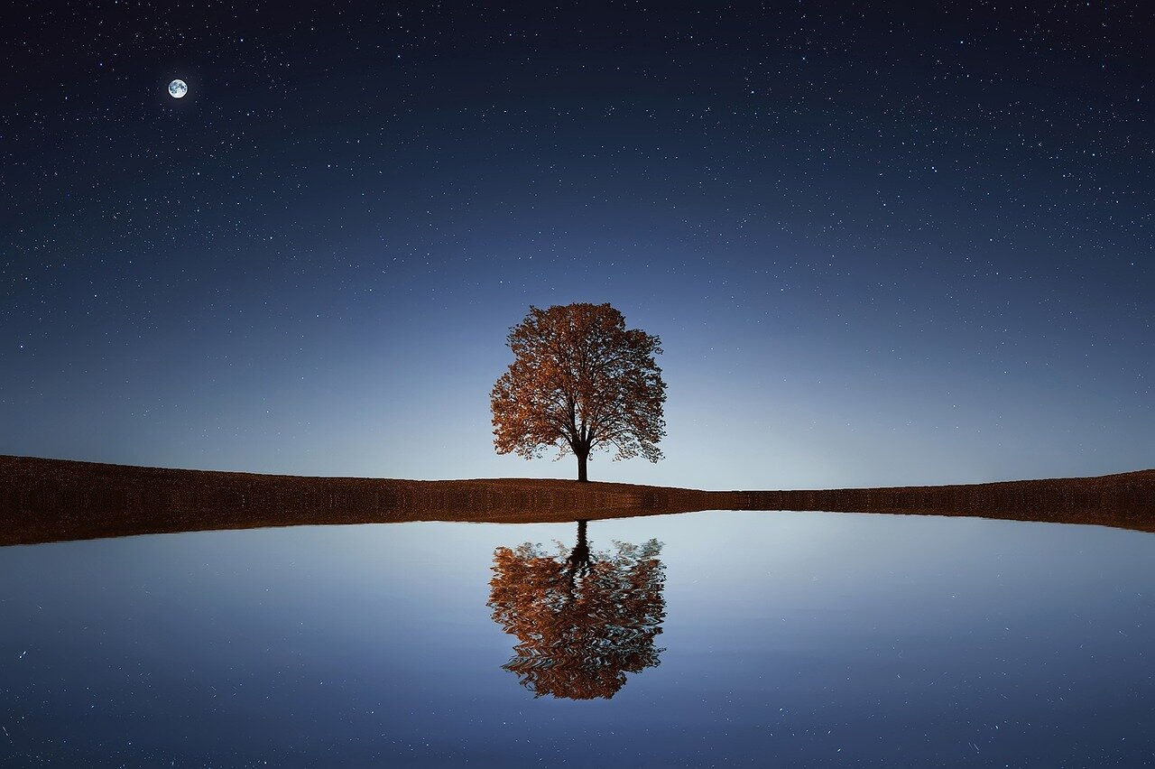 Getting comfortable with clairaudience. Image tree reflection over lake by  Bessi  from  Pixabay