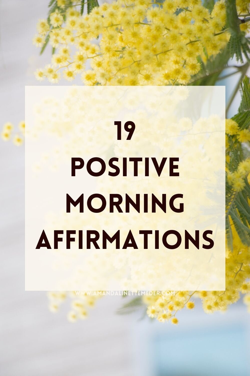 Photo of yellow flowers by TOMOKO UJI on Unsplash with text overlay 19 Positive Morning Affirmations