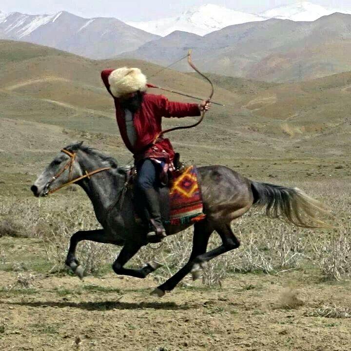The Turkoman Horse Archer