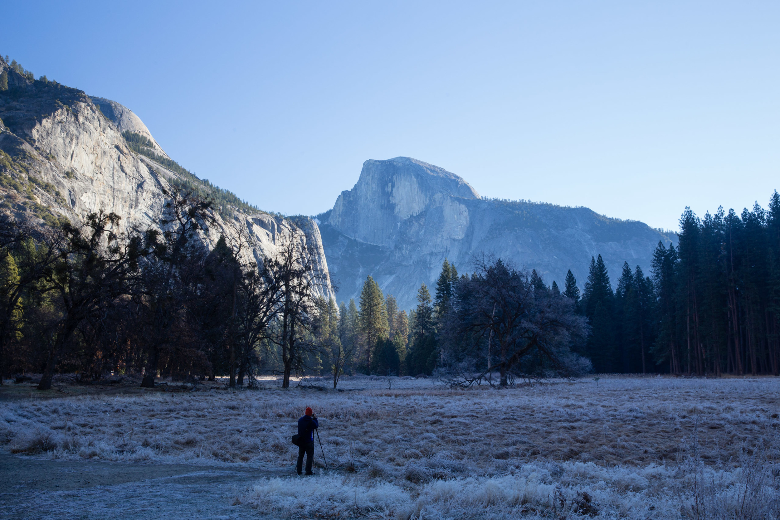 Up bright and early, frost still covers the meadow while a photographer sets up his shot.