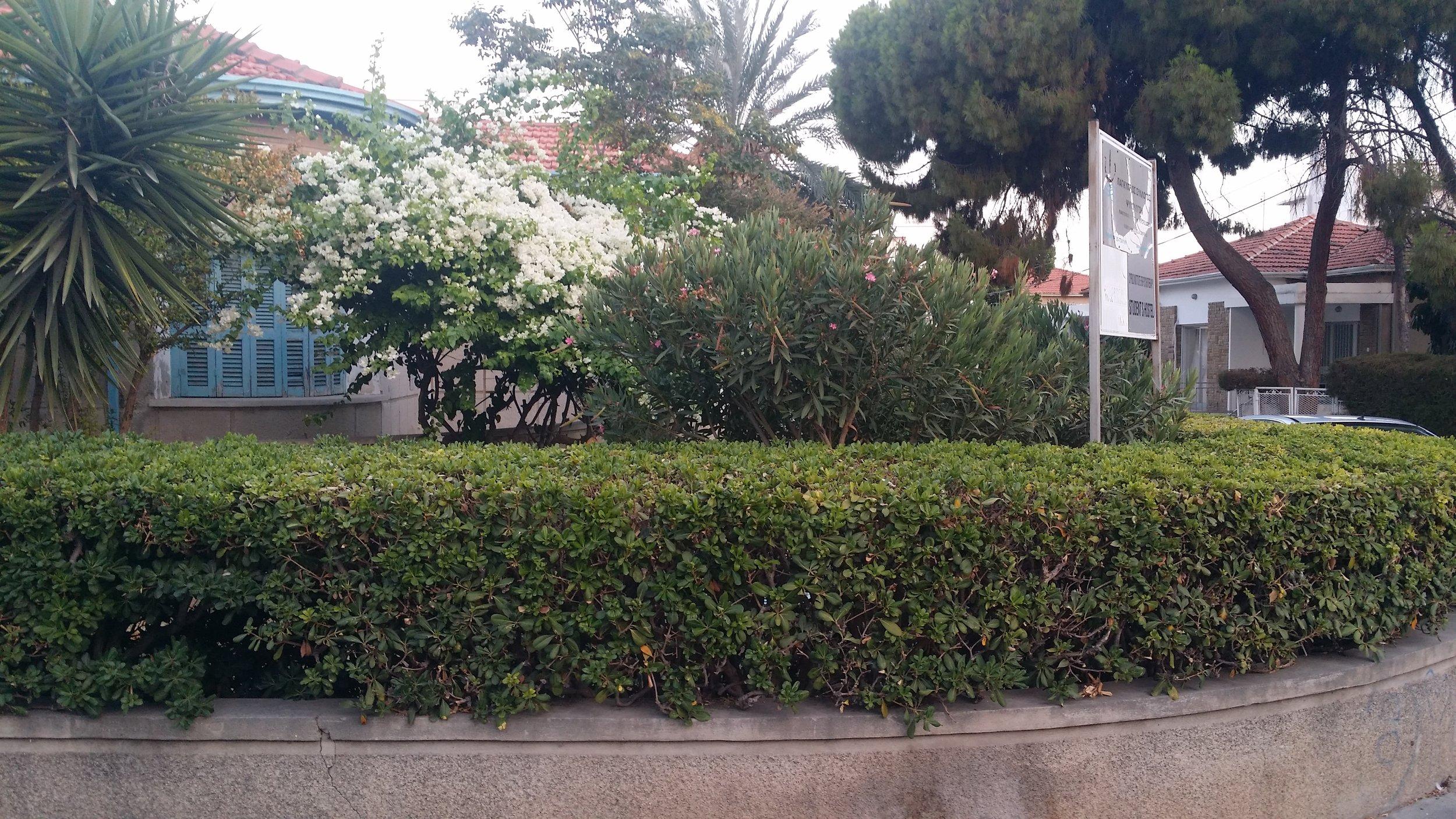 Ο ξενώνας φοιτητών του Κυπριακού Ινστιτούτου Ψυχοθεραπείας στο κέντρο της Λεμεσού. Διαθέτει 5 υπνοδωμάτια που μπορούν να φιλοξενήσουν μέχρι 12 άτομα.