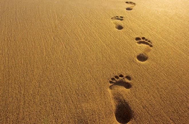 footsteps.jpg