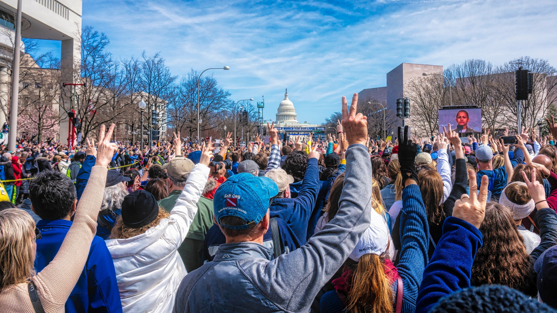 March_for_Our_Lives_Rally_DC_%2840994450742%29.jpg