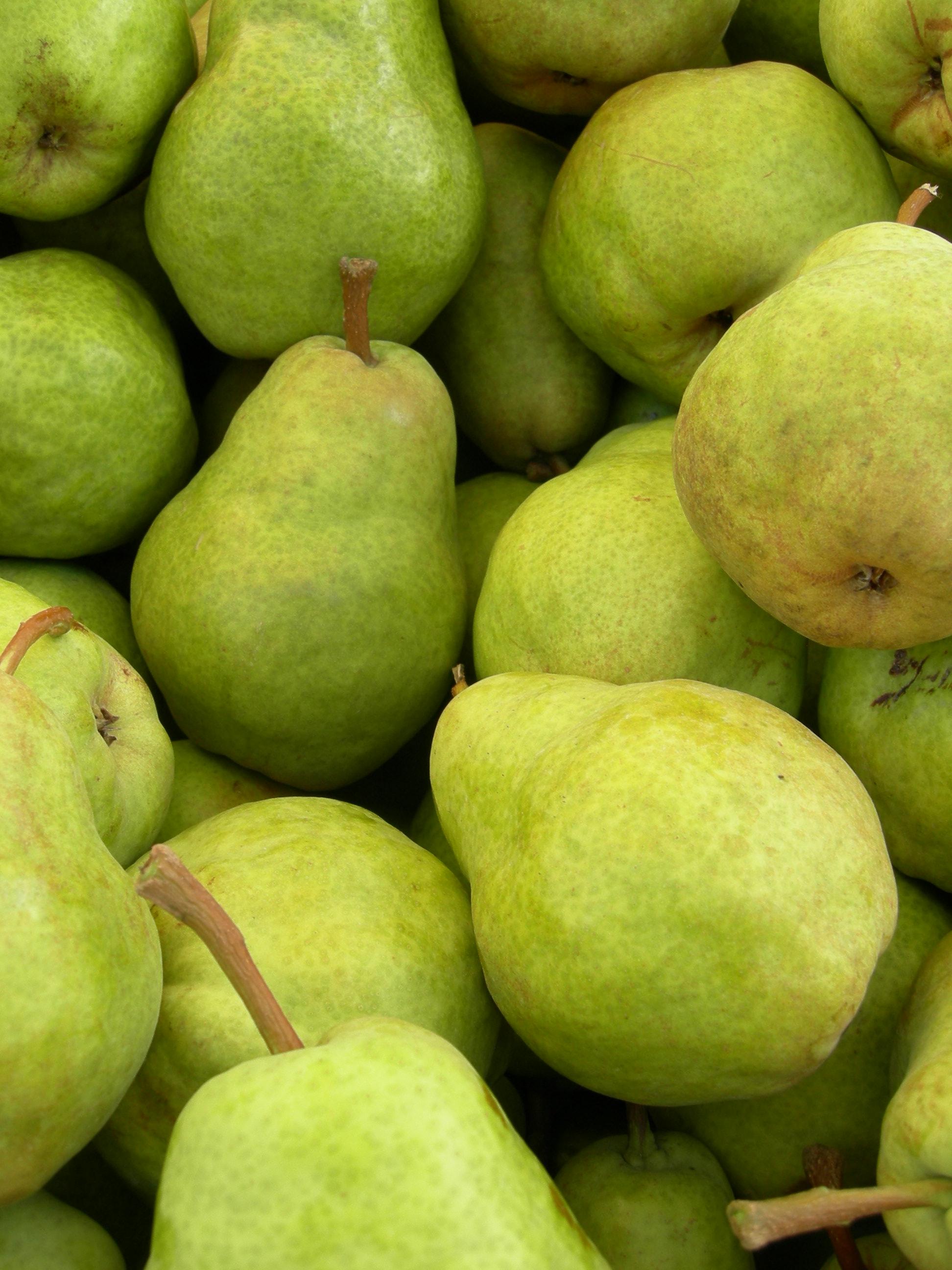 Organic_Bartlett_Pears.jpg