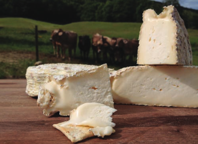 Essex County Gets Cheesy on Sunday