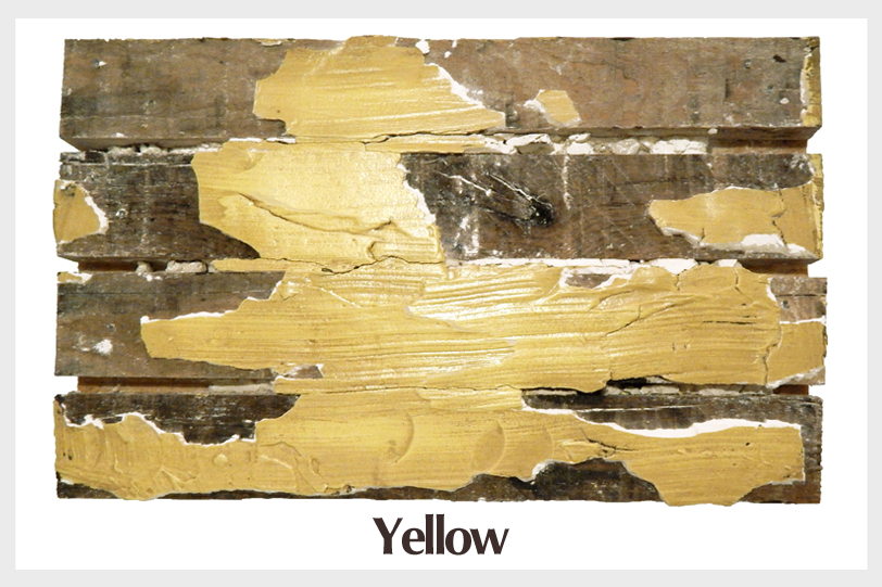 salvalgedwall_paint_yellow (border).jpg