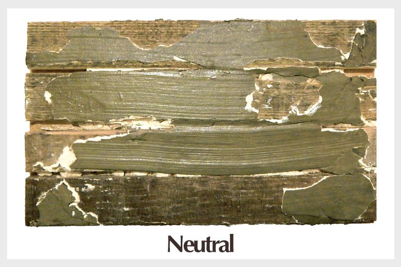 salvalgedwall_paint_neutral (border).jpg