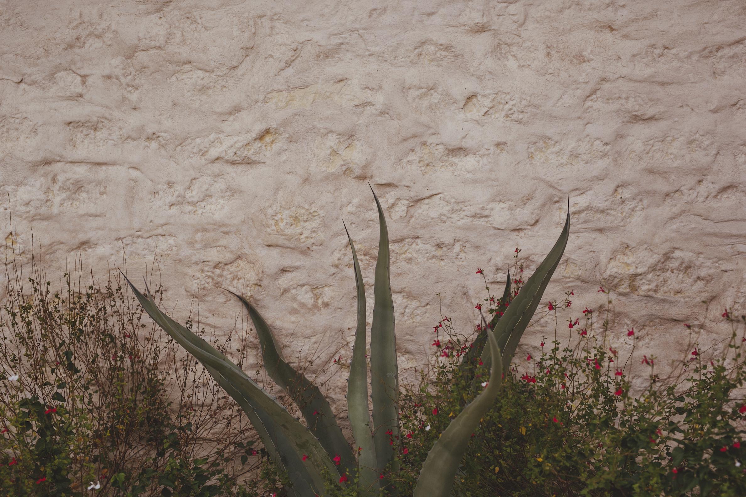 austin texas wedding photographer00682.JPG