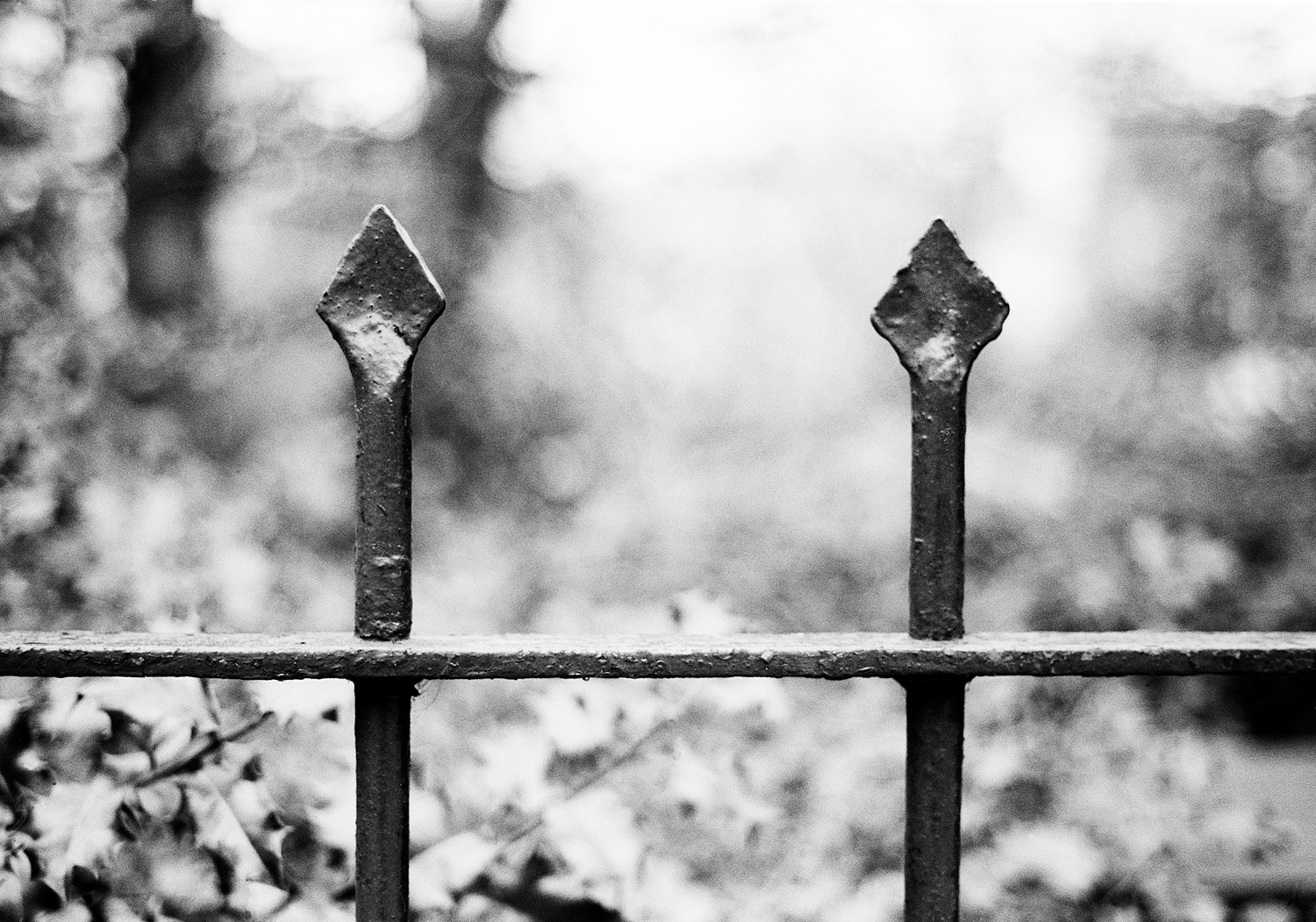 (S)two fence poles13.5x9.5s.jpg