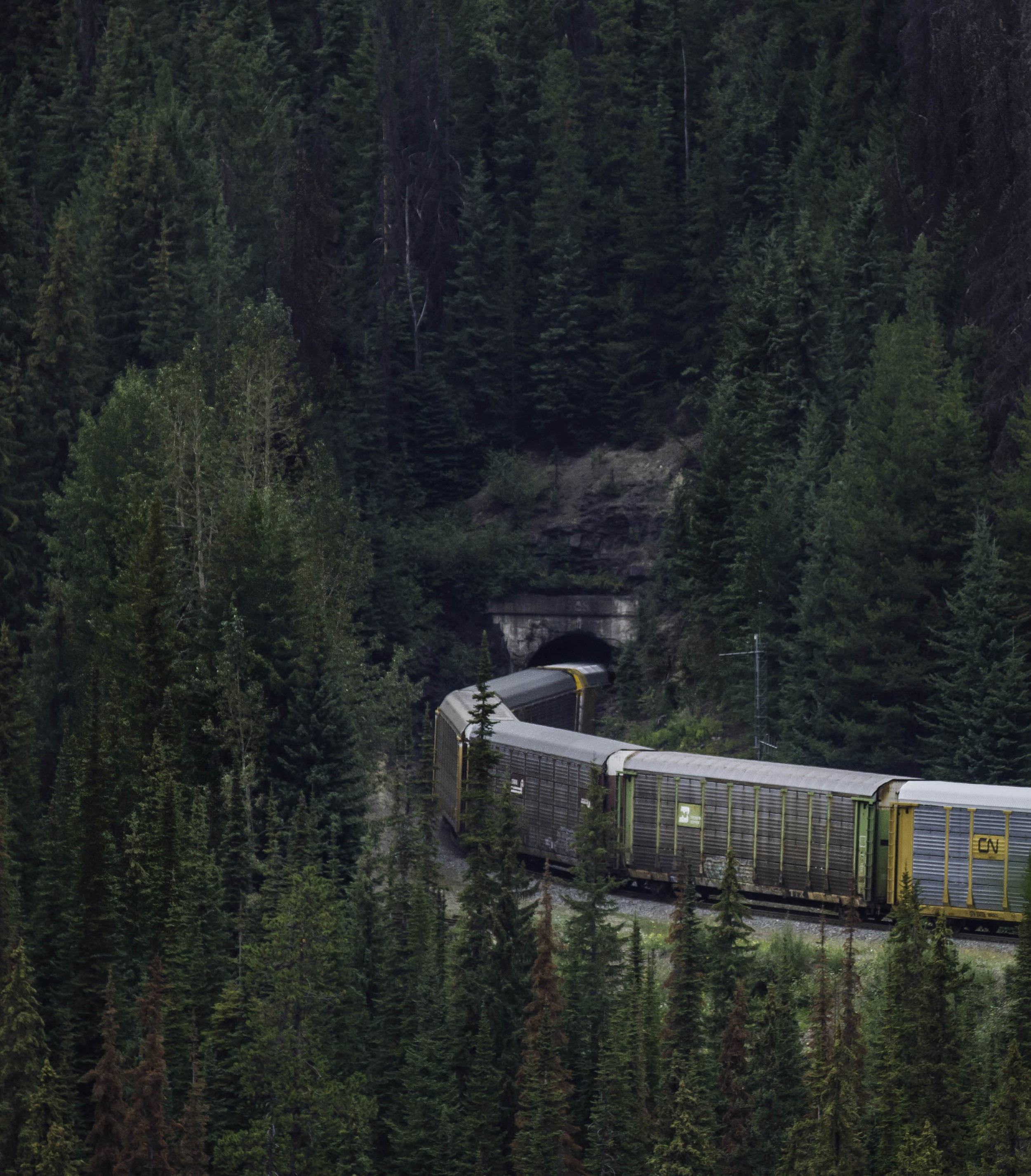 Train crosses the Big Hill through one of two 280 degree tunnels on the Canadian Pacific railroad