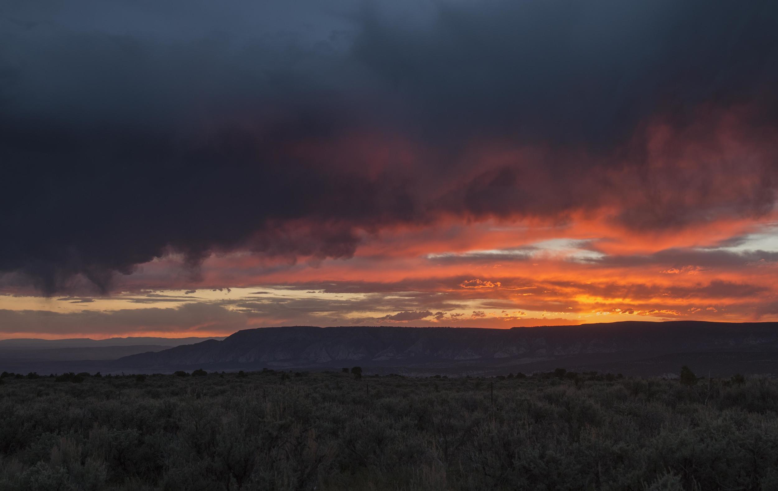 dino sunset-2.jpg