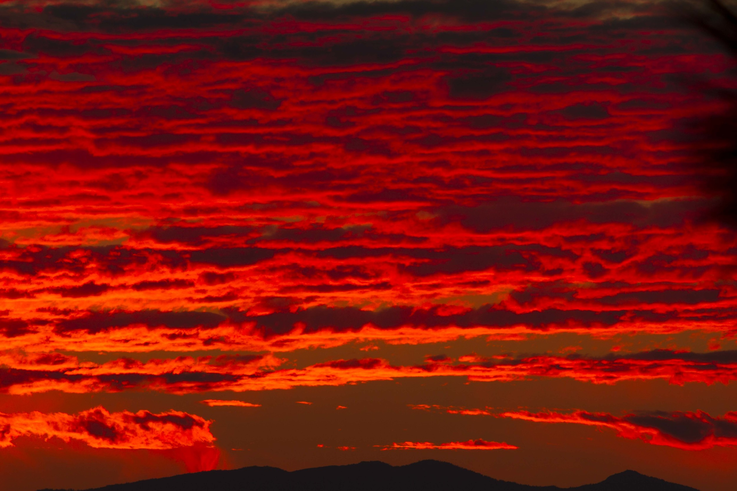 Colors of the Wind-14.jpg