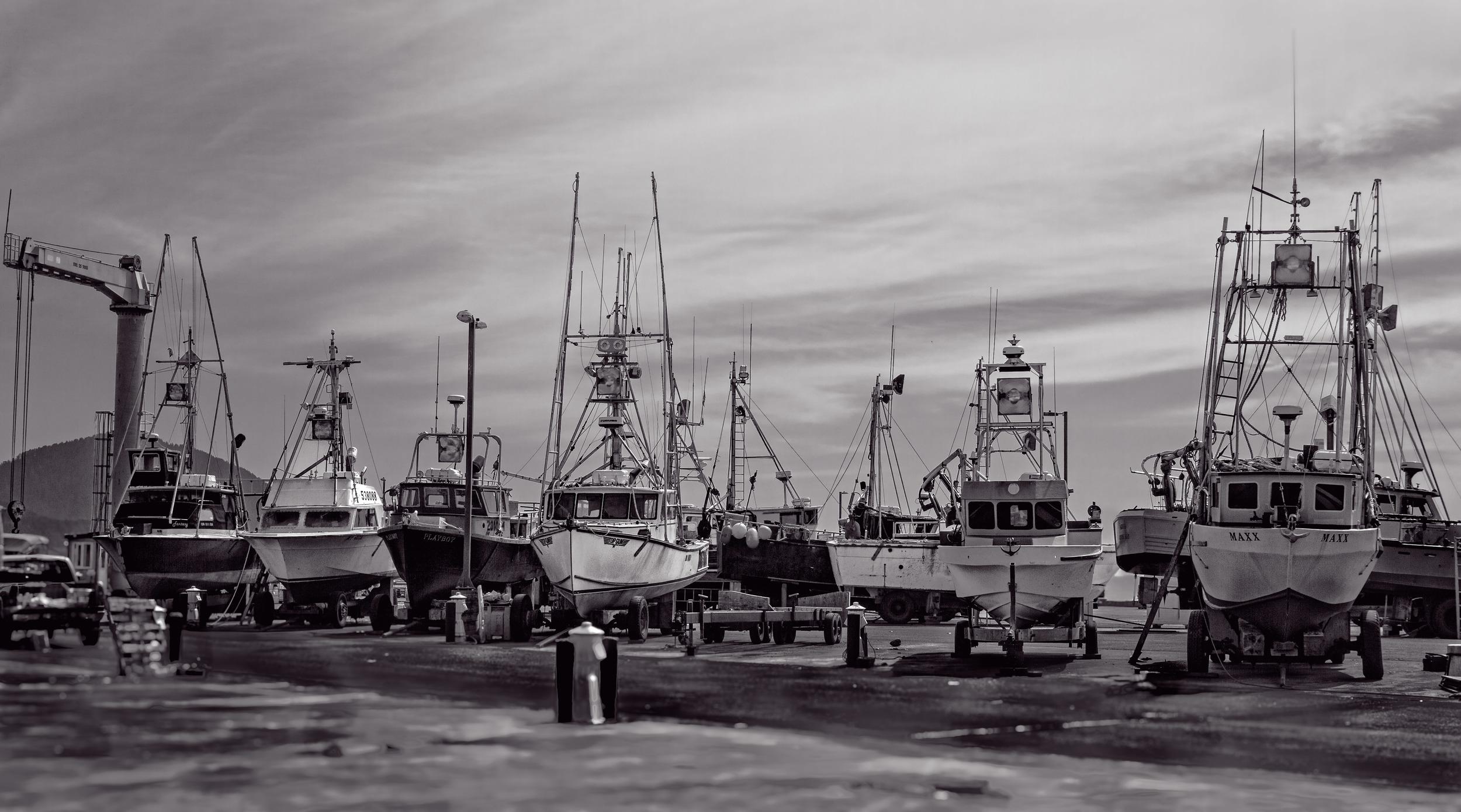 The fleet waits.jpg