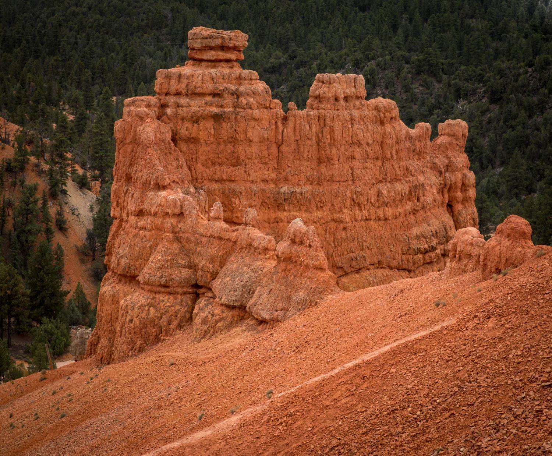Red Rock Canyon detail.jpg