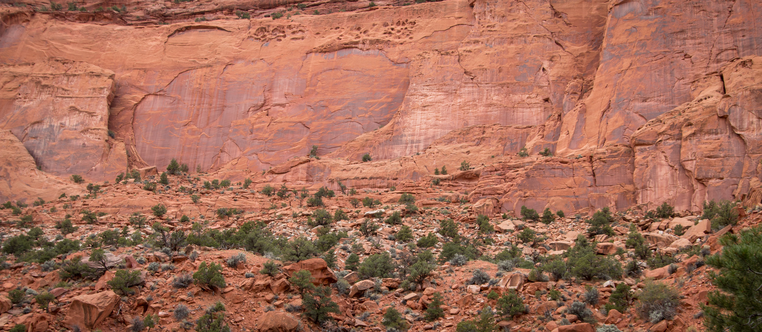 Canyon wall along the Burr Trail