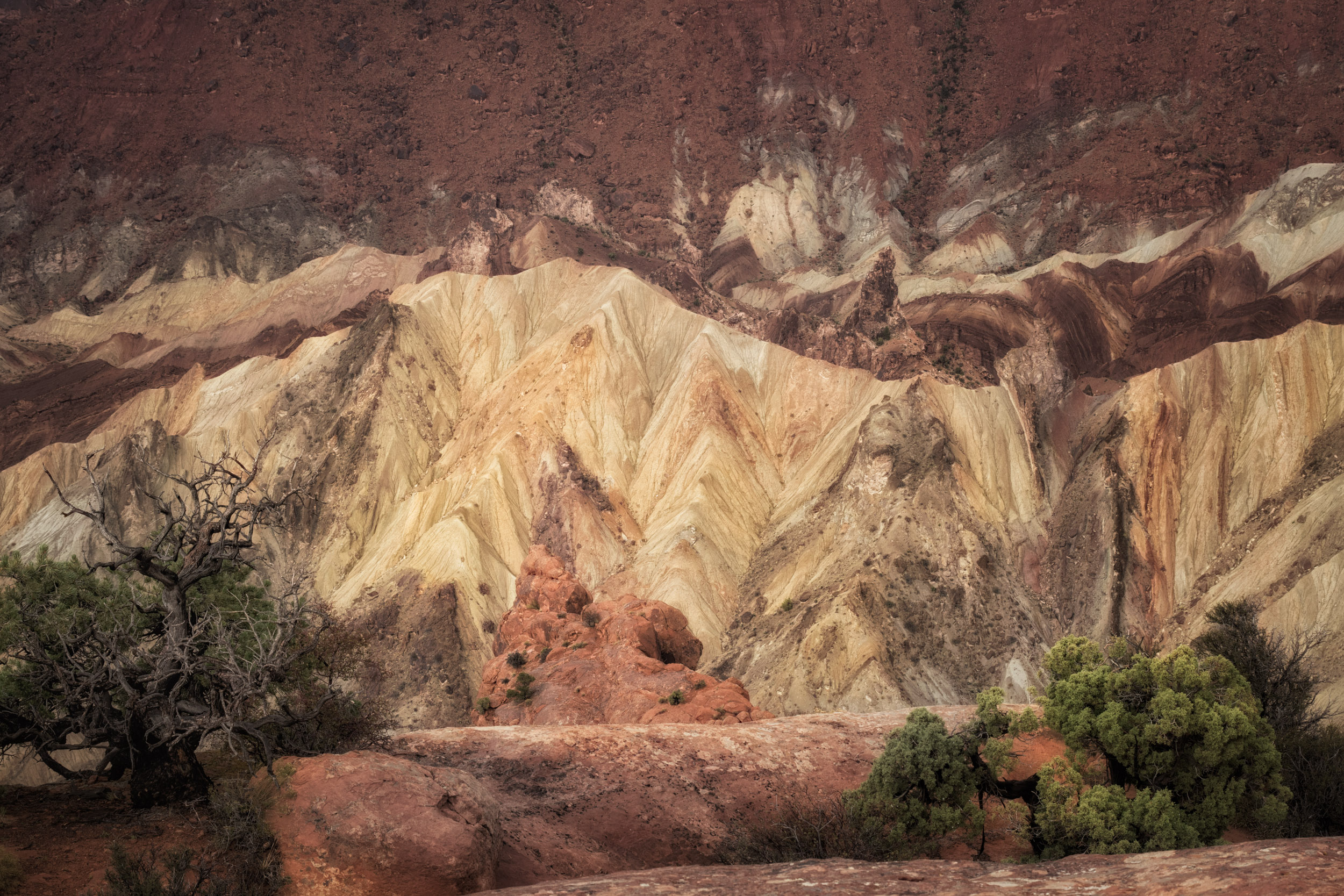 Upheaval Dome detail