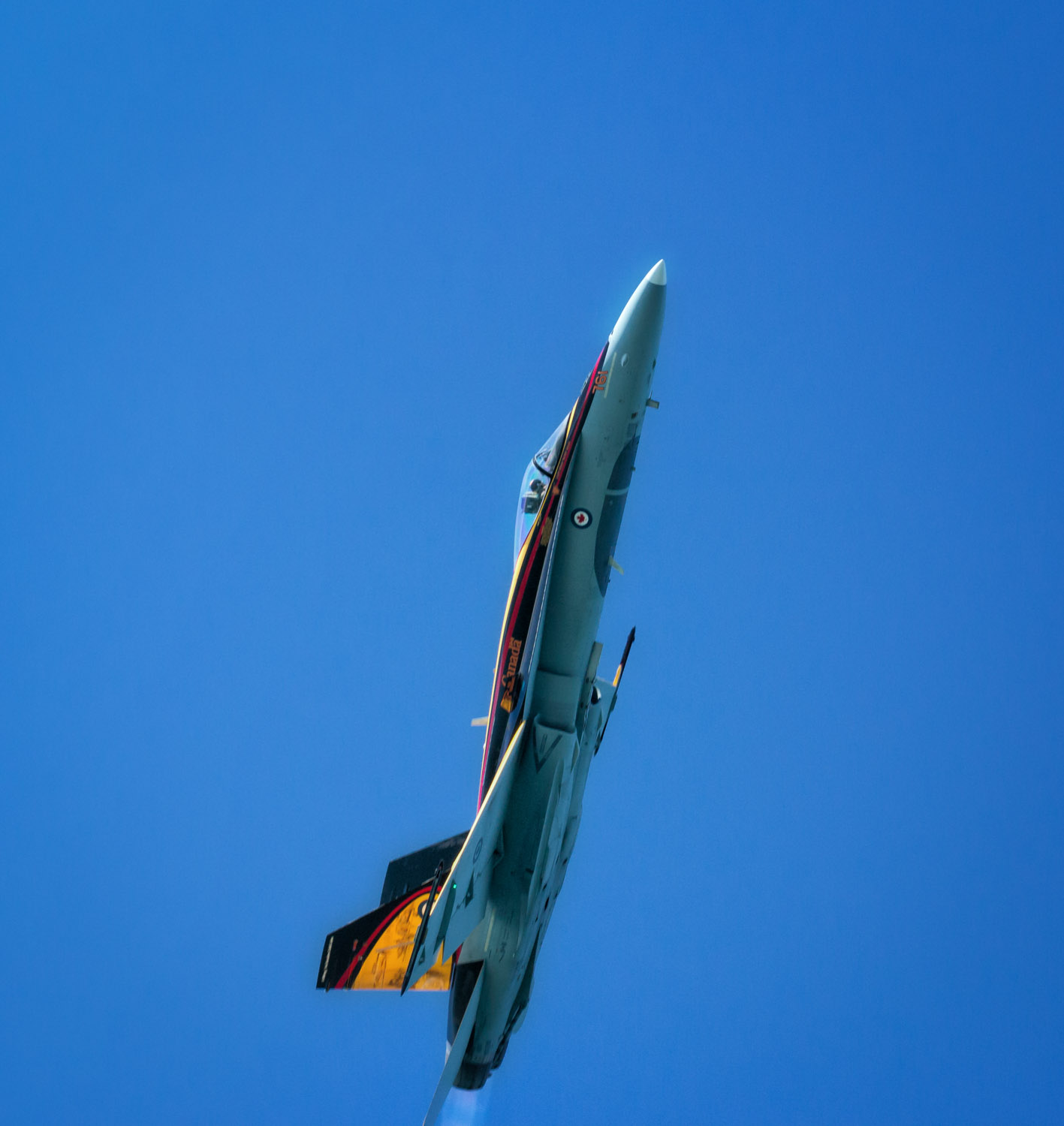 Canadian Hornet goes vertical.jpg