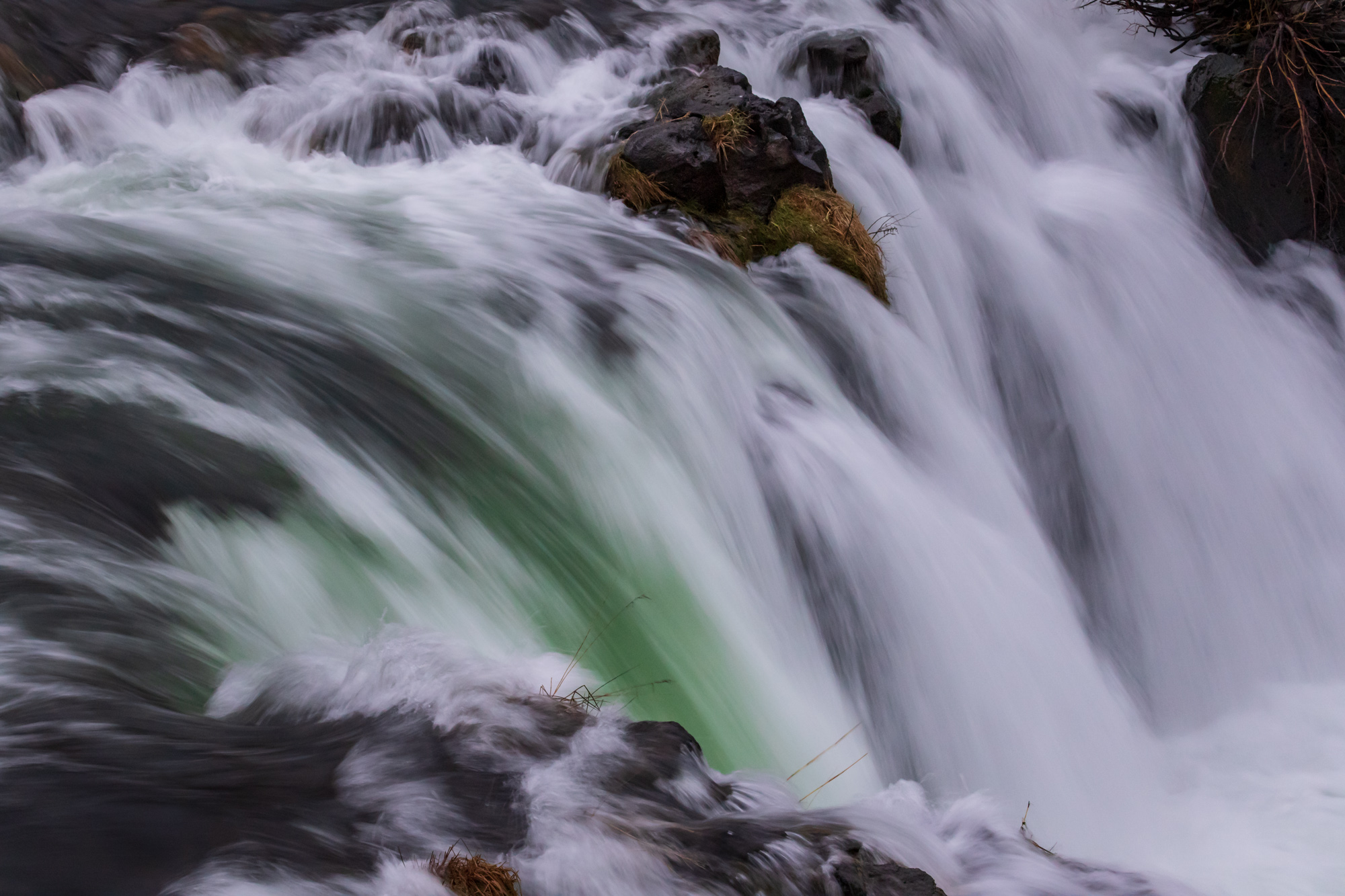 Green and white at Steelhead Falls