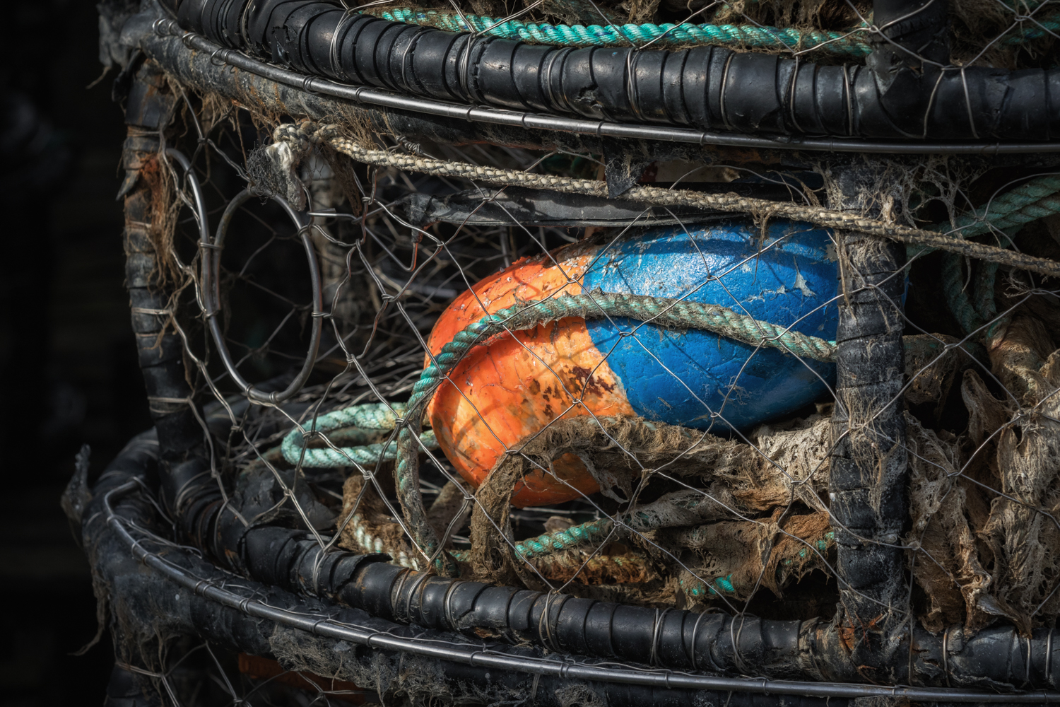 Blue and Orange Buoy  The Orange. The Blue. The texture of the rope in the crab pot. Do inanimate objects wait? Does it long to go back to work? Does it miss the kiss of the cold Oregon Pacific?