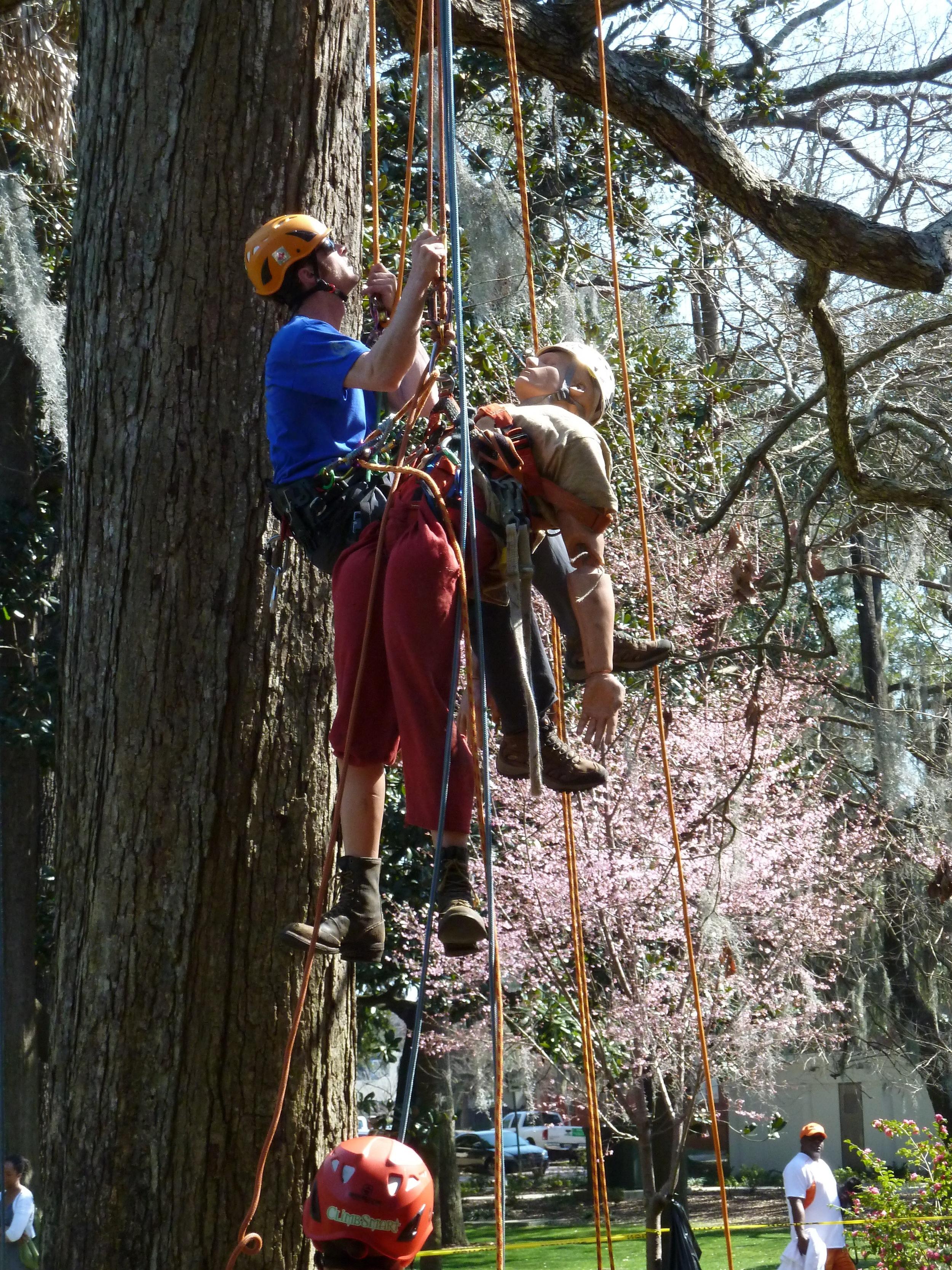 Savannah rescue 2.JPG