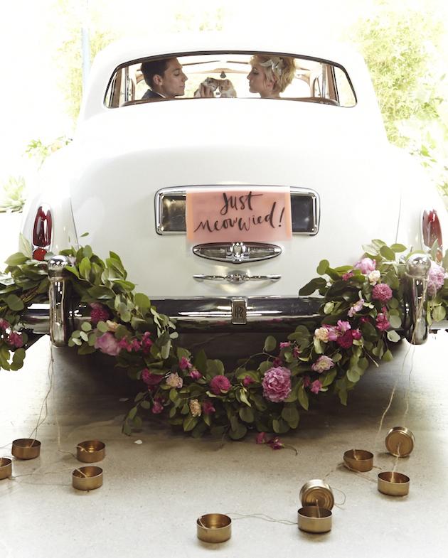 Rolls Royce Silver Cloud Pet Wedding With Kittens