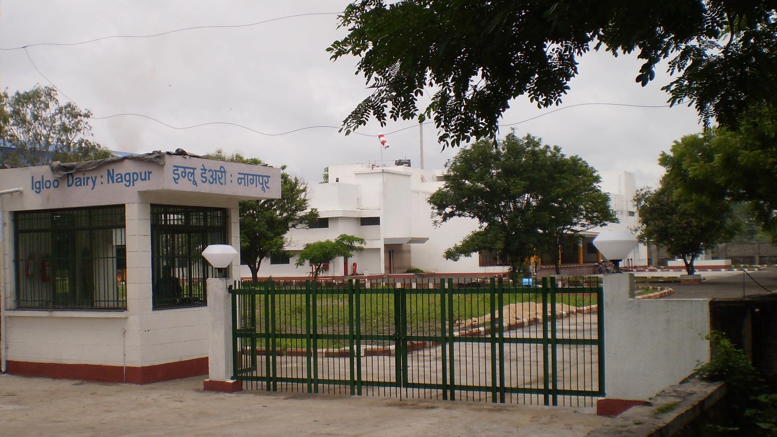 Igloo Dairy : Nagpur