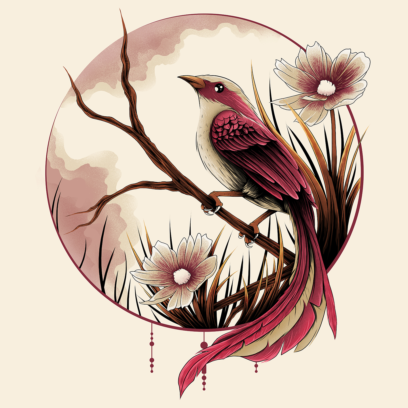 bird_web2.jpg