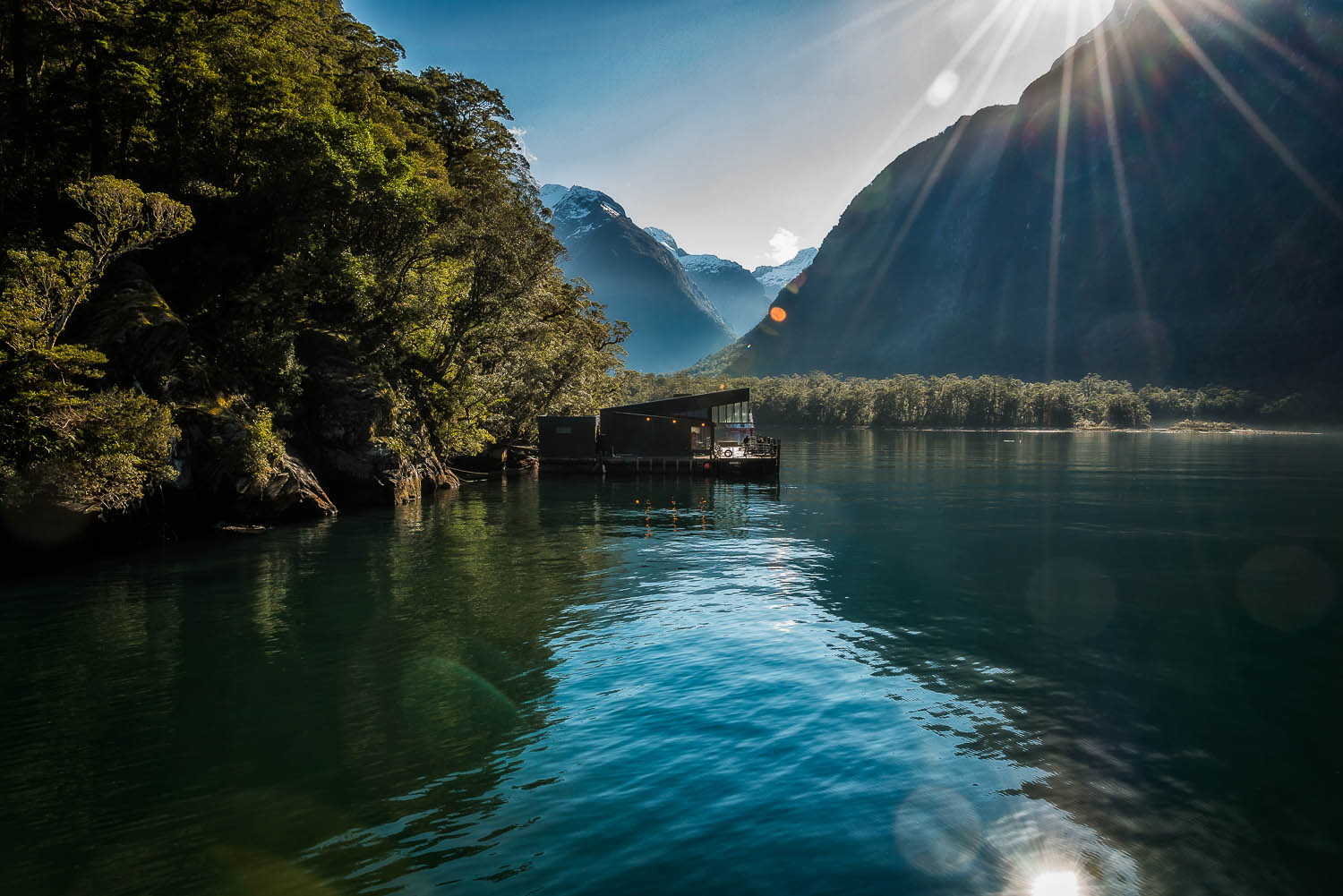 A view from a sheltered bay in the spectacular    Milford Sound    in Fiordland,    New Zealand   .