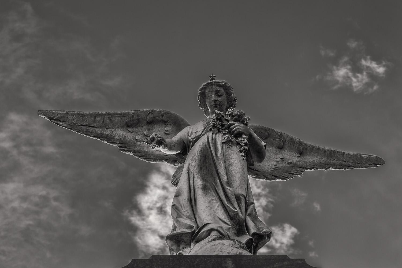 Angel and Sky, La Recoleta Cemetery, Buenos Aires, Argentina