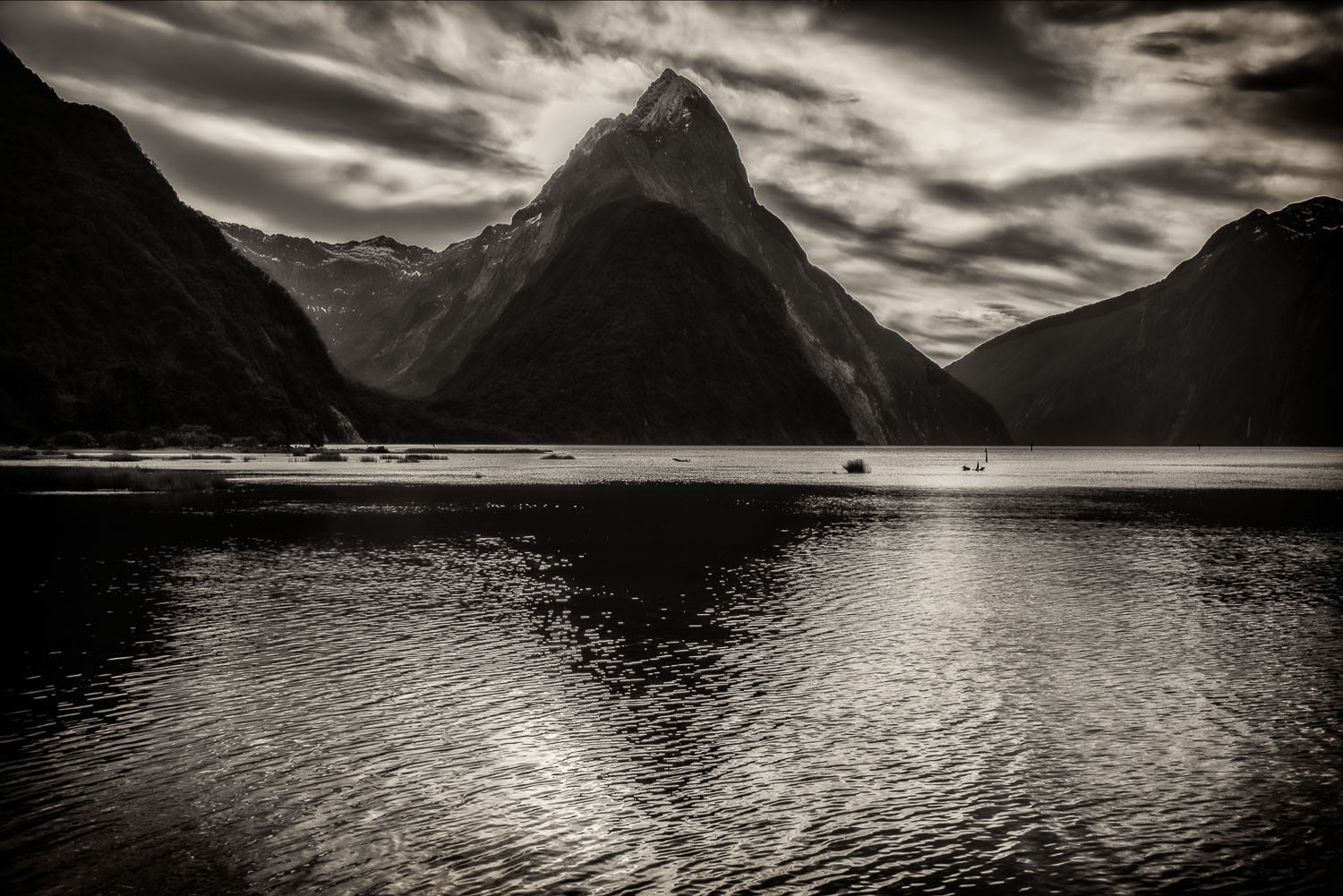 Serenity, Milford Sound, New Zealand