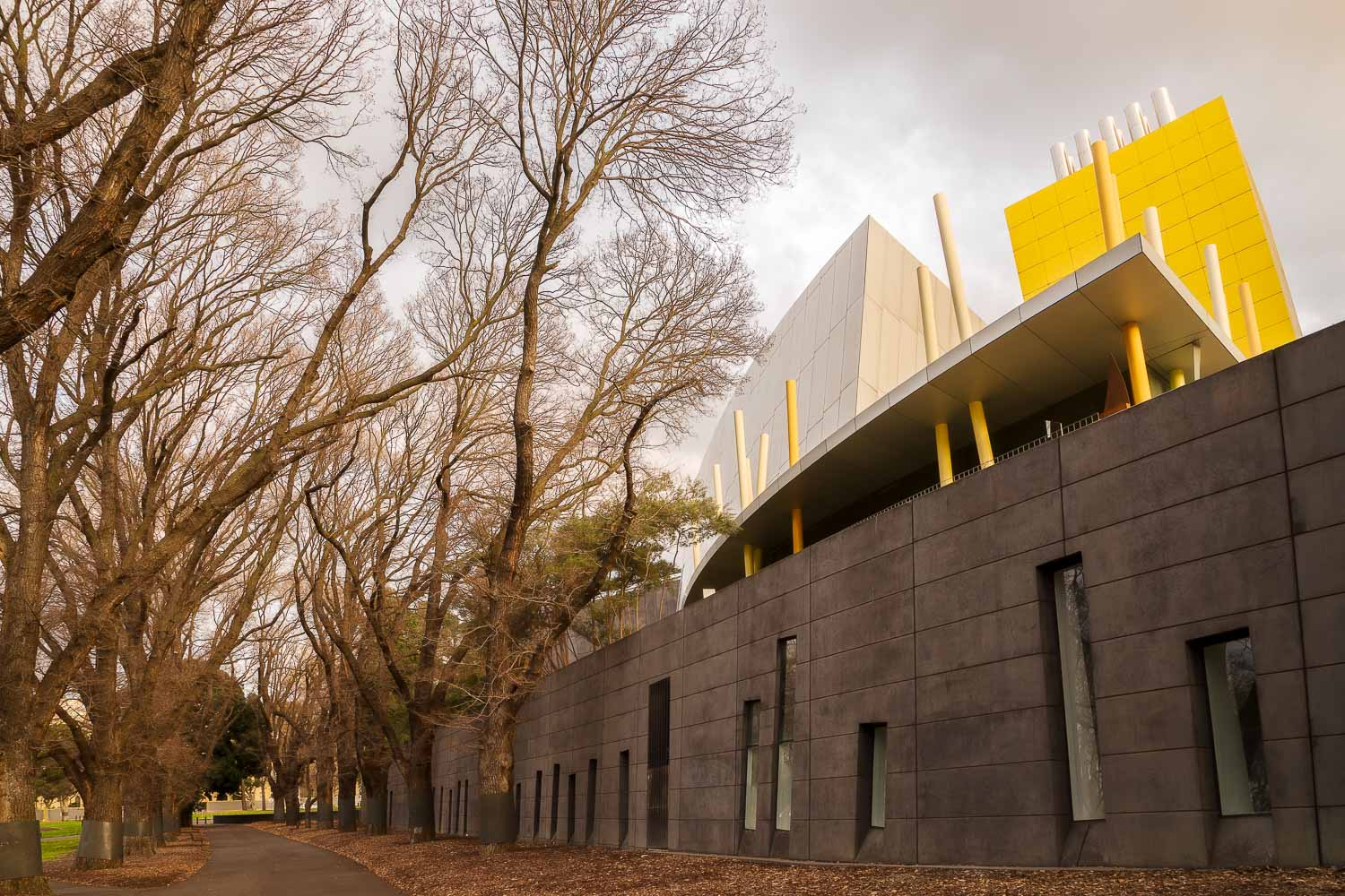 A lovely, tree-lined path adjacent to the    Melbourne Museum    under late afternnon winter's light. Image made with the    Sony a7R II camera    and    Sony/Zeiss 24-70mm f4 lens   .