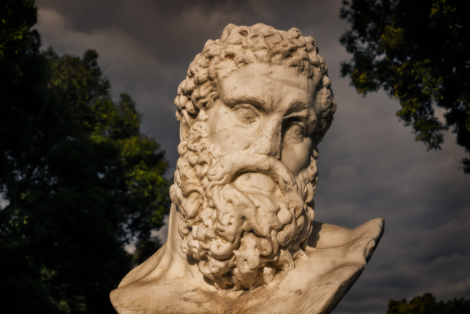 A detailed view of a bust of    Hercules    in the    Queen Victoria Gardens    in    Melbourne   , Australia.