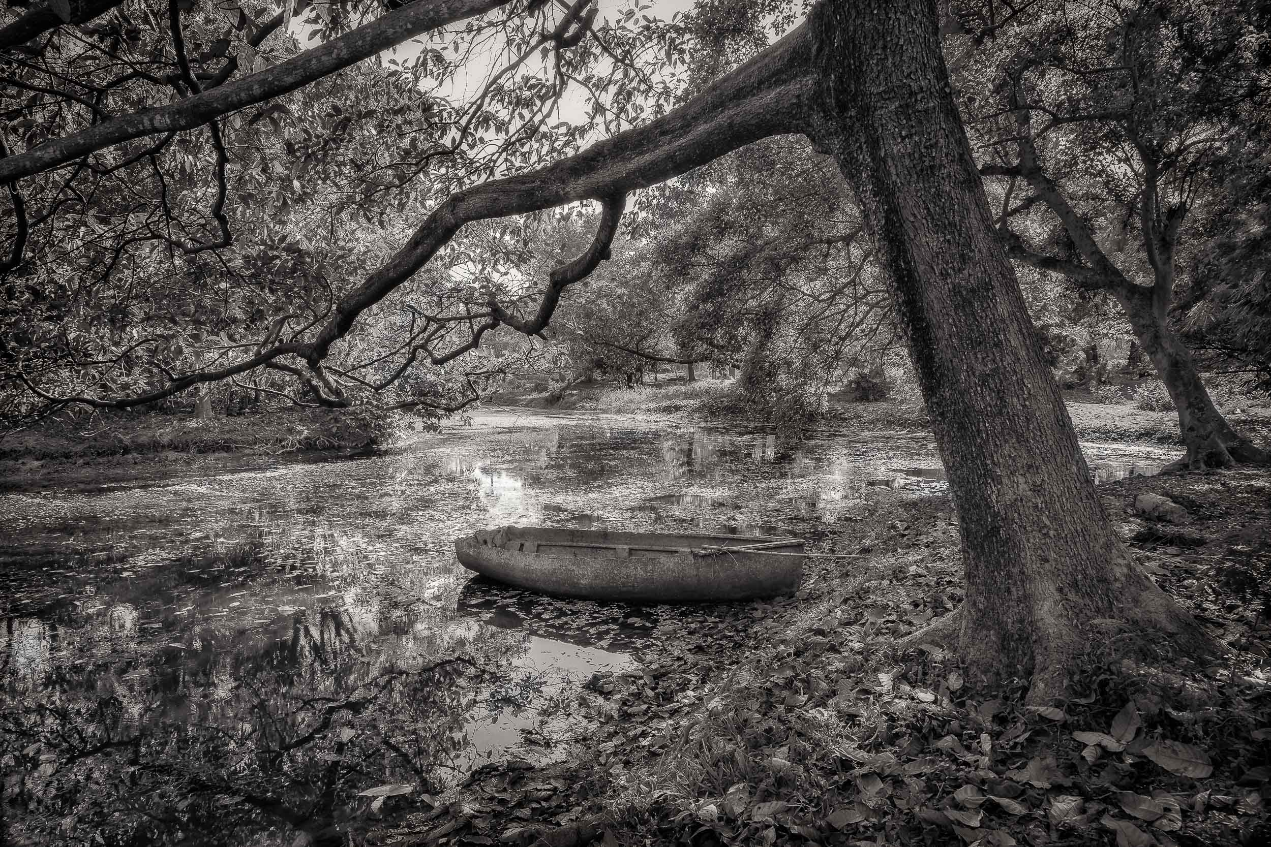 An    old boat    in the grounds of the    Botanical Gardens    in    Kolkata, India