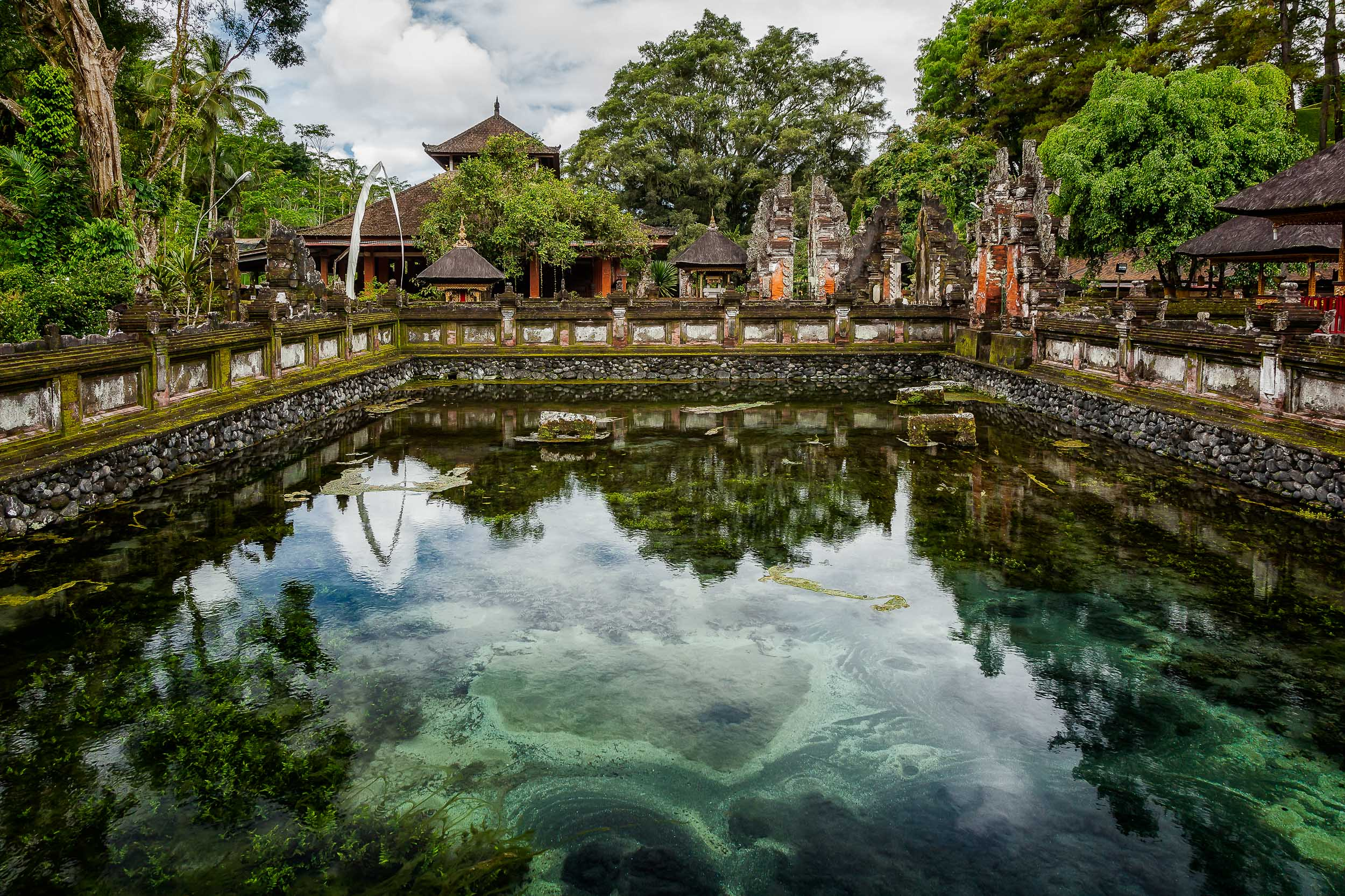 The color of the slime in a stagnant pool produces  harmony  with the surrounding trees and a vivid contrast with the predominantly orange color of the walls in a  Hindu temple in Bali, Indonesia . Beauty is everywhere, it's all a matter of perspective.