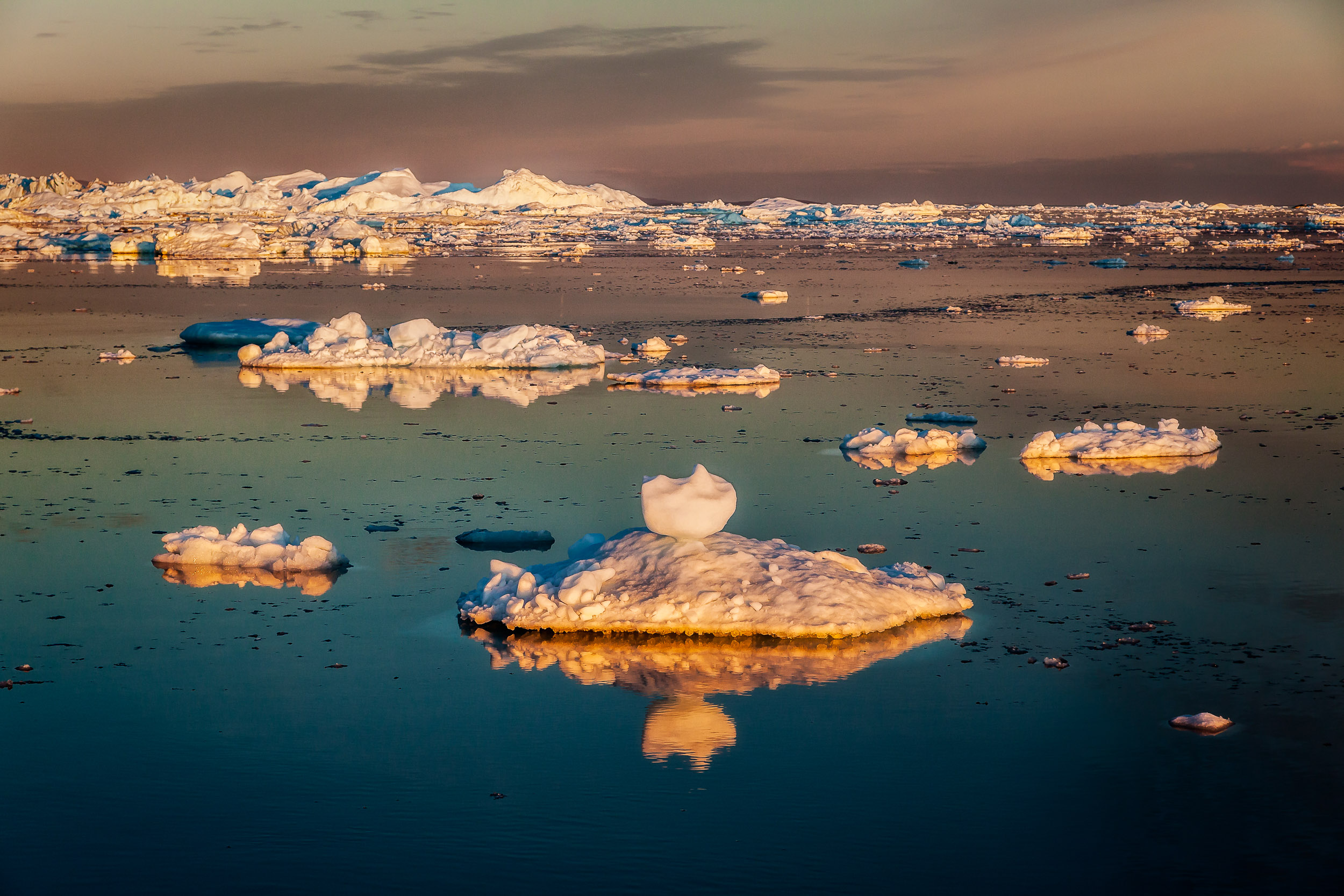 The    spectacular colors    of the    midnight sun    illuminated    icebergs    in the    Ilulissat Icefjord   ,    Greenland   .