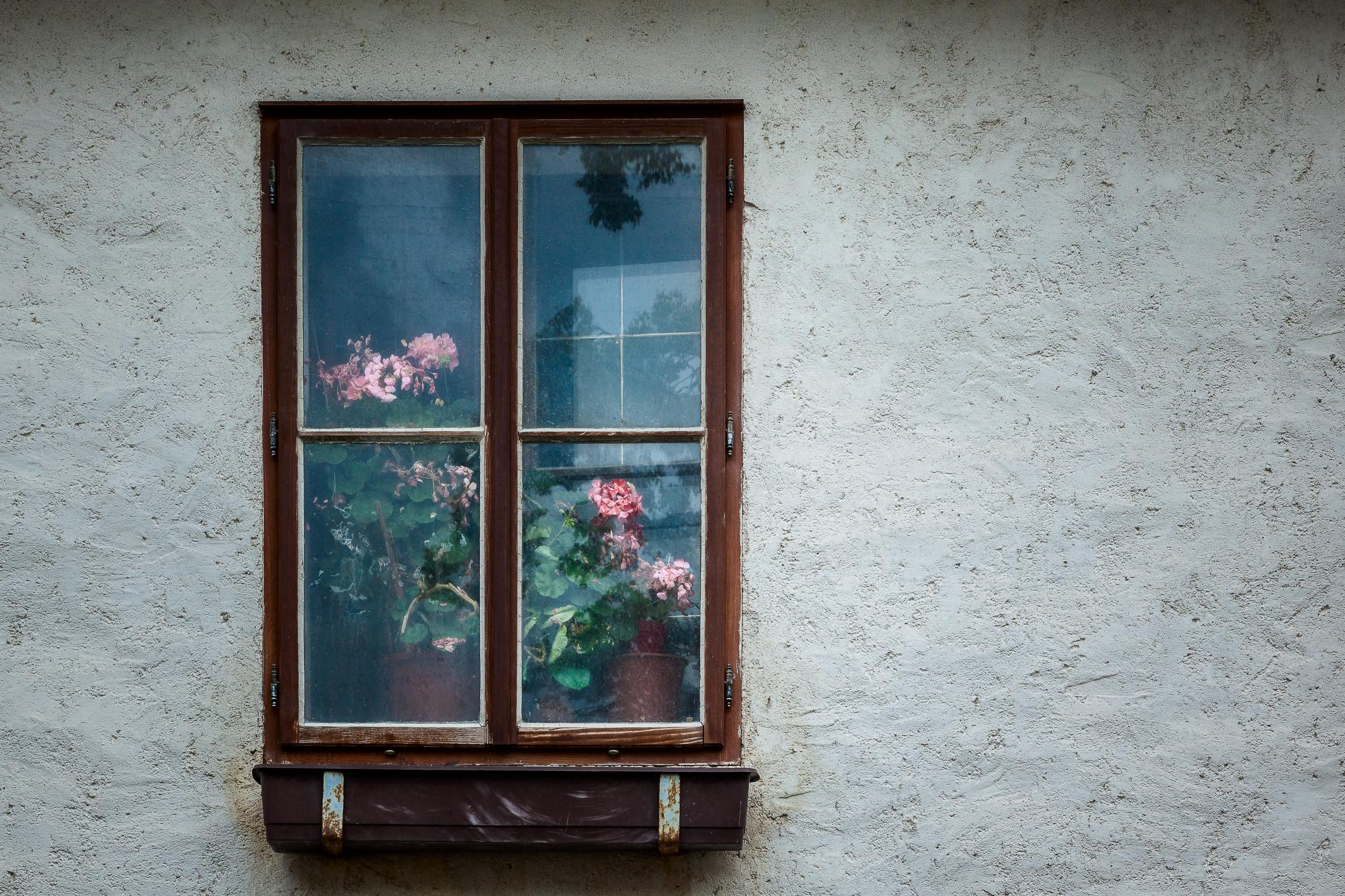 An  interior landscape , encassed within a window frame in  Salzburg, Austria