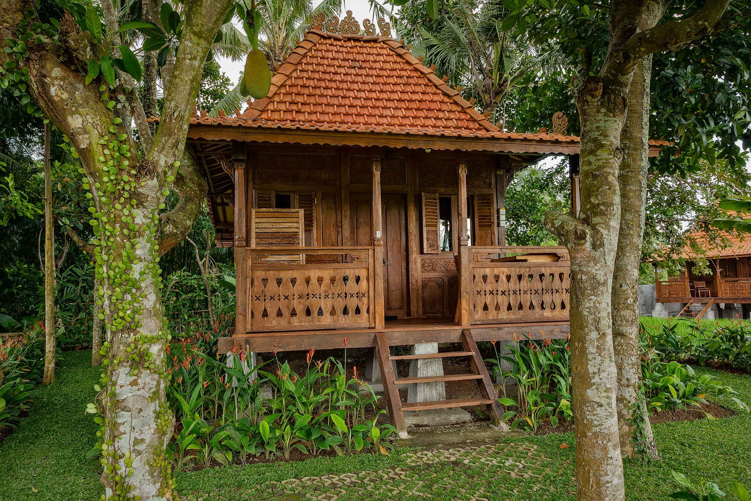 Kajane Mua  is a low to mid price accommodation option in  Ubud, Bali . This photo features one of their delightful free standing  bungalows, on the edge of the paddy fields .
