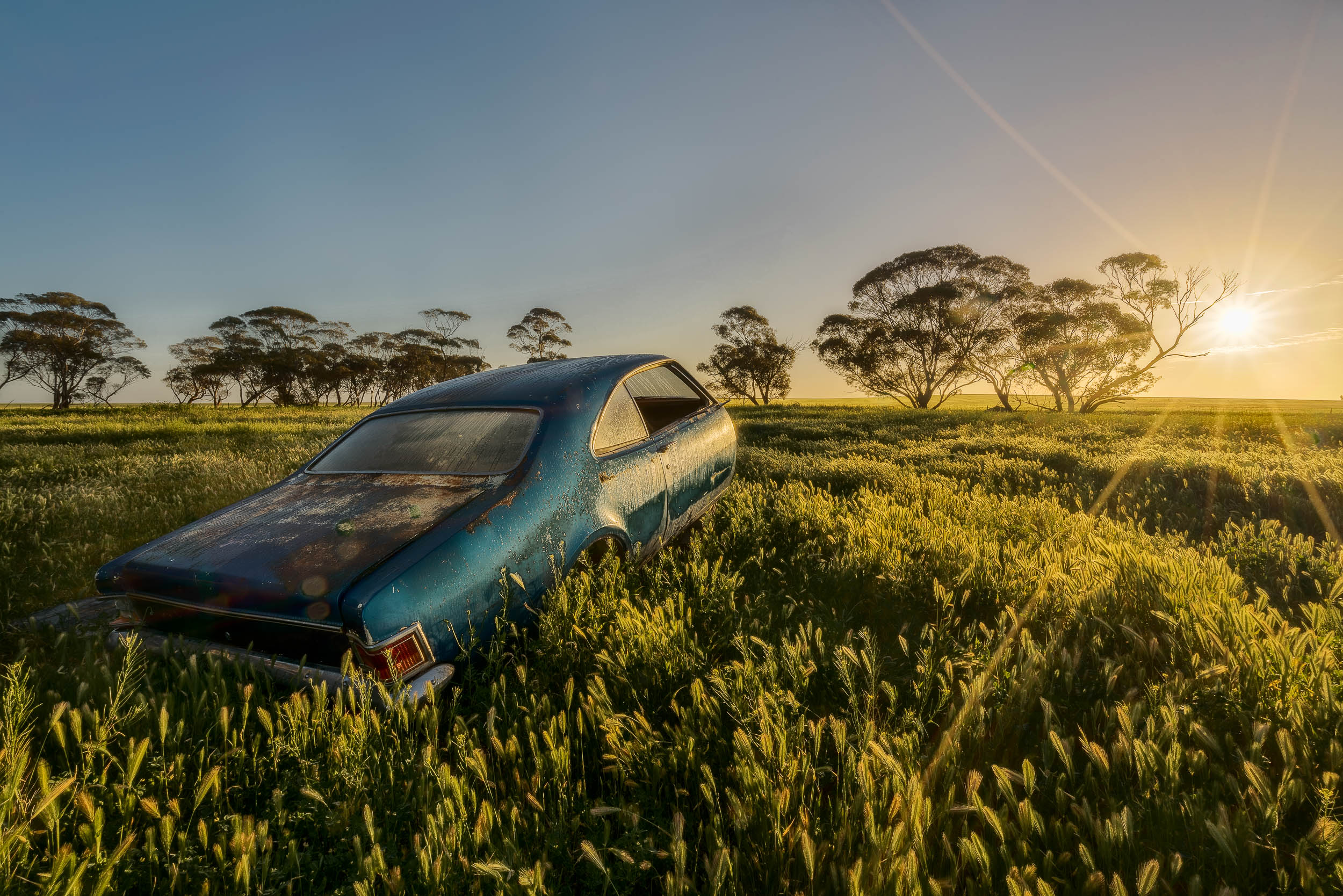 The remains of an  old car  in a field at  sunrise  in the  Mallee  region of  Australia .