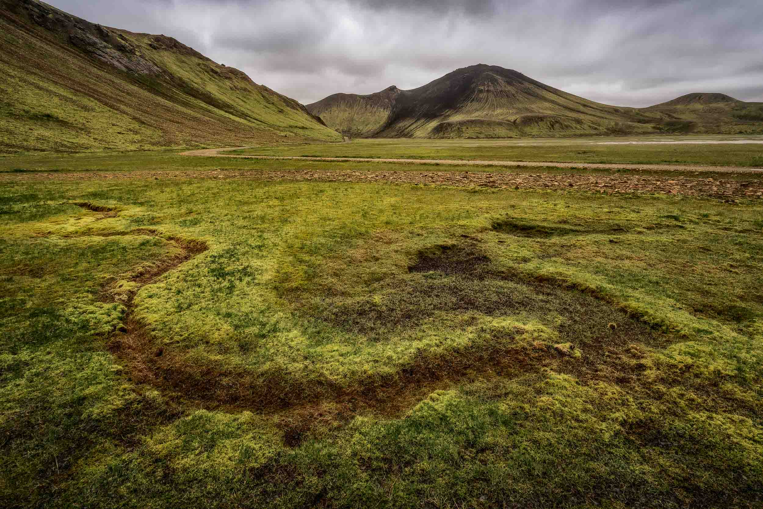 Lush, boggy moss   , photographed under eerie light, in a    large valley    in the    Highlands    region of    Iceland   .