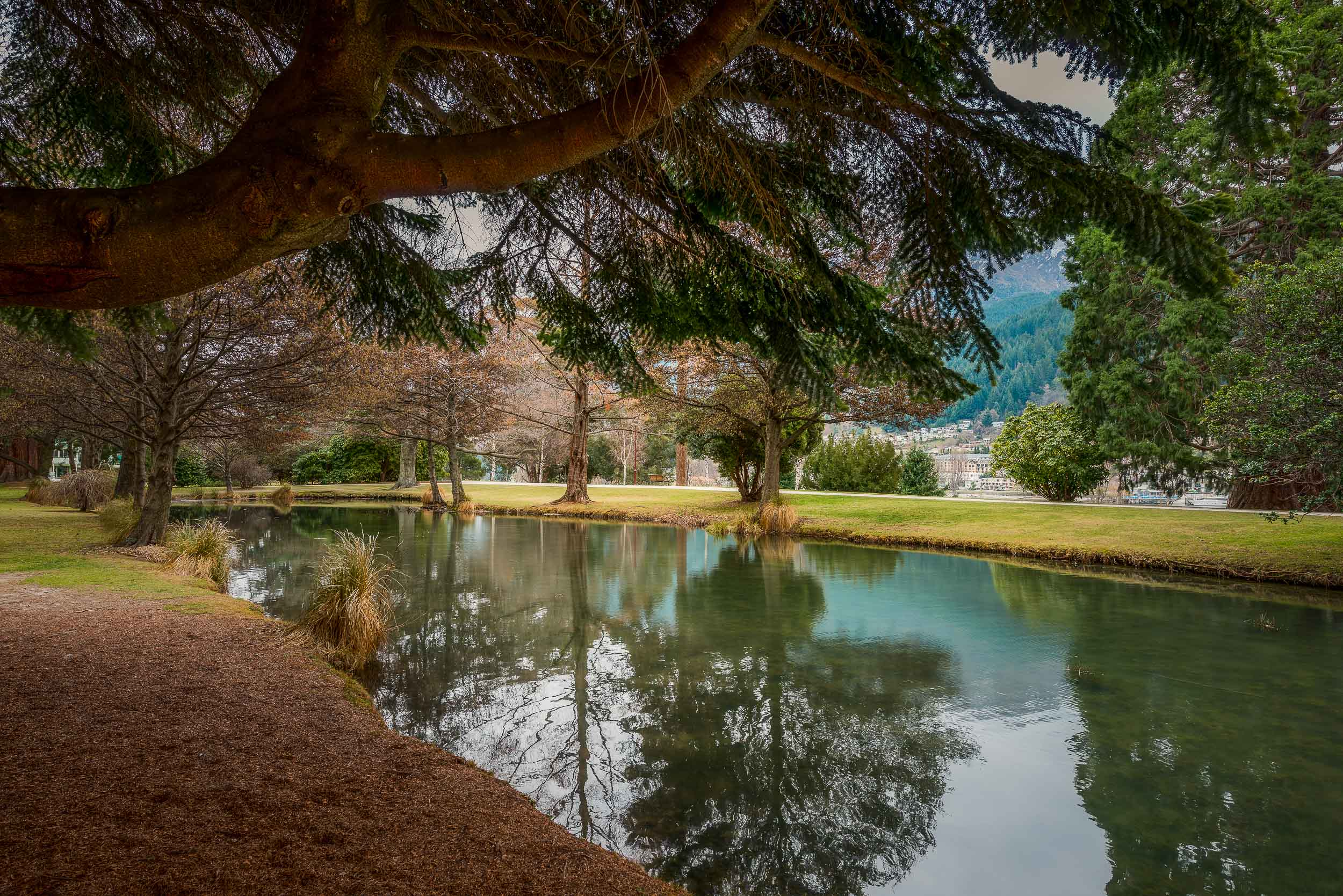 A    picturesque lake    framed by an overhanging tree at    Queenstown Gardens    in the city of    Queenstown, New Zealand   .